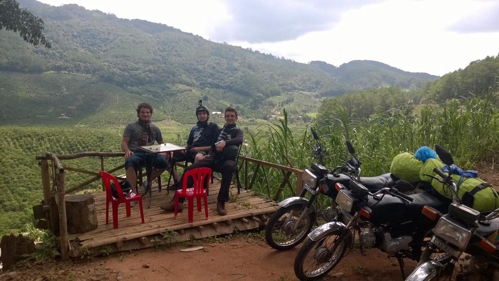 Bamboo de Vietnam